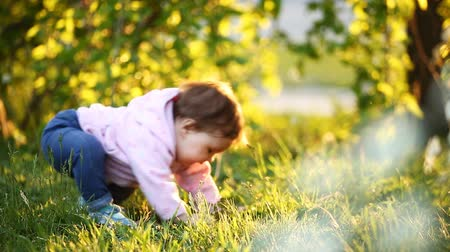 babygirl : Rear view of the cute baby-girl sitting on the green grass in the park ar sunset.