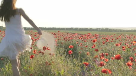 despreocupado : CLIP EDIT Young woman in white sundress waking through red poppies field, holding white hat, twisting, dancing enjoying free time, resting on nature, smiling, flirting, touching petals of flowers. Stock Footage