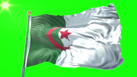 stilize : Algeria flag seamless looping 3D rendering video. 3 in 1: Includes isolated on green screen and alpha channel as luma matte for easy clipping in AE. Beautiful textile cloth fabric waving