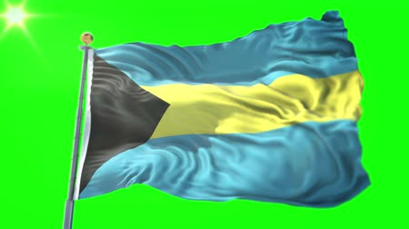 stilize : Bahamas flag seamless looping 3D rendering video. 3 in 1: Includes isolated on green screen and alpha channel as luma matte for easy clipping in AE. Beautiful textile cloth fabric waving Stok Video