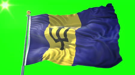 barbados : Barbados flag seamless looping 3D rendering video. 3 in 1: Includes isolated on green screen and alpha channel as luma matte for easy clipping in AE. Beautiful textile cloth fabric waving Stock Footage