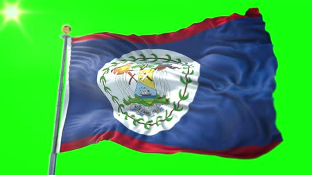 árbocszalag : Belize flag seamless looping 3D rendering video. 3 in 1: Includes isolated on green screen and alpha channel as luma matte for easy clipping in AE. Beautiful textile cloth fabric waving Stock mozgókép
