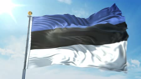 Estonia flag seamless looping 3D rendering video. 3 in 1: clipping in ae. Beautiful textile cloth loop waving