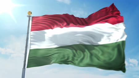 kırpma : Hungary flag seamless looping 3D rendering video. 3 in 1: isolated clipping in ae. Beautiful textile cloth loop waving