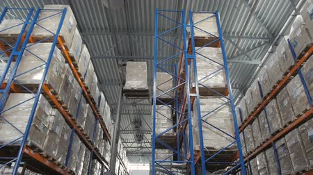доставлять : Forklift Truck Driver Loading Pallet In Storage Warehouse Стоковые видеозаписи