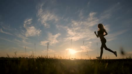 estilo de vida : Silhouette of a sexy fit woman girl running at sunset. Training, jogging, healthy lifestyle. Vídeos