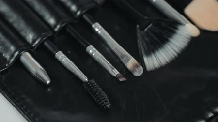 aplikatör : set make-up brushes, shot on white background. macro professional close up baggage artist