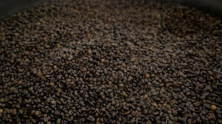 maréknyi : Grains of roasted coffee - close-up big event expo roasting machine