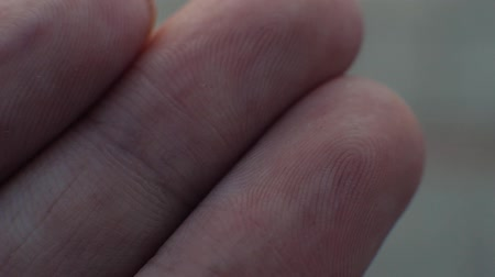 impressão digital : Macro view of a finger print on a human thumb over extreme macro
