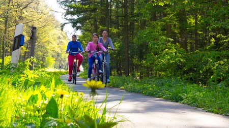bisiklete binme : family trip on bicycles, mother with two daughter  riding bikes