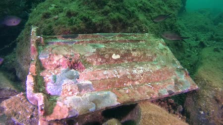 uw : Old tiles on the bottom of the sea surrounded by fish. Stock Footage