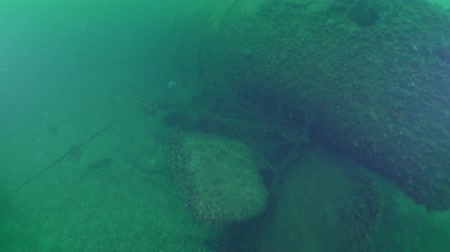 torpedo : The aft part of a sunken submarine: the camera approaches the rudders of depth and screws.
