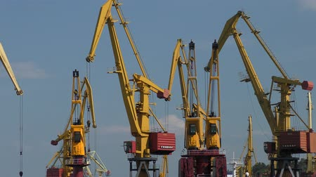 lanoví : The work of the port cranes.
