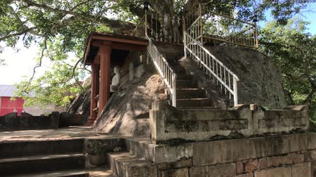 seylan : Anuradhapura, Sri Lanka, a staircase to the sacred tree 4K Stok Video