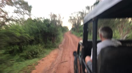 kutsal : Yala, Sri Lanka, November 30, 2019, tourists ride in a jeep on a village road 4K Stok Video