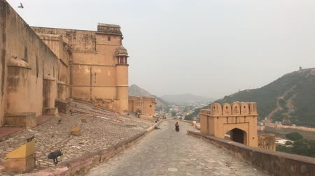 amer fort : Jaipur, India, November 05, 2019, Amer Fort, tourists look at the horizon from above 4K