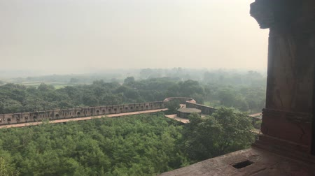 buda : Agra, India, November 10, 2019, Agra Fort, forest view from the windows of the red fort 4K