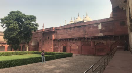 mahal : Agra, India, November 10, 2019, Agra Fort, Tourist examines the walls of the old fort 4K