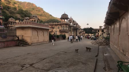 slum : Jaipur, India, November 04, 2019 Galta Ji, tourists see the sights of the old city part 2 4K