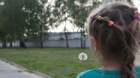 lágyság : Young child girl blowing away dandelion Stock mozgókép