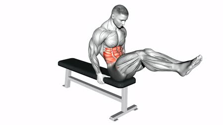 especially : Double twist on the bench. Video guides exercising for bodybuilding Target muscles are marked in red.