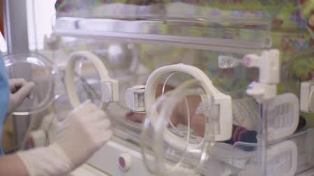 Doctor opens a window in a baby incubator.