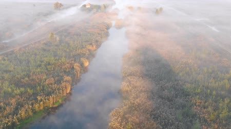 Sunrise over the misty river