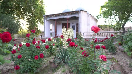 cami : Istaravshan Choir Gumbaz Four Tin Cupolas Mosque Frontal View With Blue Roses At Sunset On A Sunny Blue Sky Day