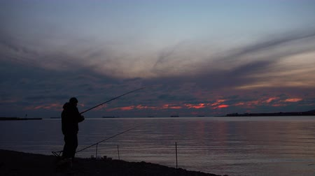 fisher : Fisherman catch fish at beautiful evening. 4k  video.