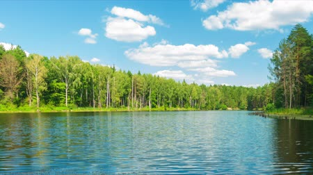 Full HD timelapse, Beautiful forest lake and blue sky at sunny day, pro res. Wideo