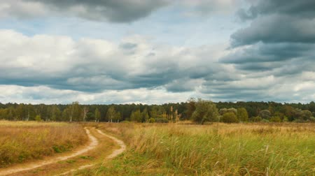 donder : Panoramische timelapse van herfstlandschappen, regenwolken vliegen over veld, full hd pro res video. Stockvideo
