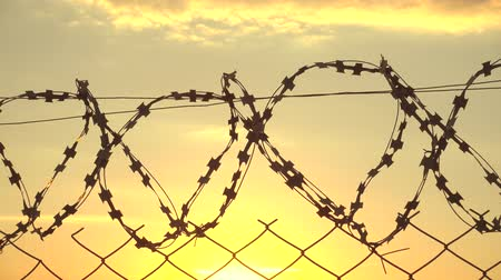 Wire metalic border at sunset, border zone, security territory, 4k Wideo