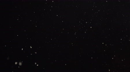 Looped footage of white snow falling from night sky, seamless, 4k pro res. Wideo