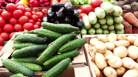 üretmek : Assortment of fresh vegetables at a farmers market in Pyatigorsk Russia Stok Video