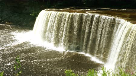 upper peninsula : Tahquamenon Falls Stock Footage