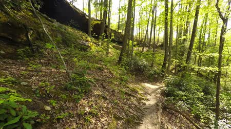 wanderweg : Wandern in der Red River Gorge Videos