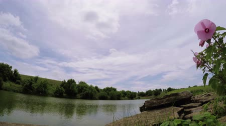 Time lapse video of clouds moving over a small lake in rural Kentucky