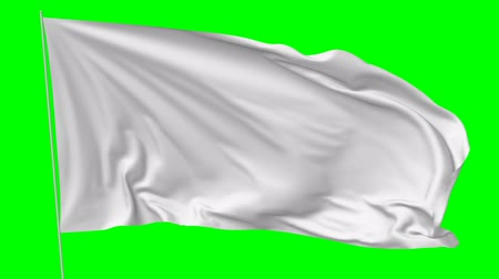 szatén : Blank plain white flag with flagpole waving in the wind, surrender flag 3D animation with green screen Stock mozgókép