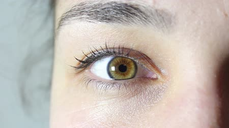 оптический : Brown-green eye of a young beautiful girl. The girl looks into the camera and blinks her eyes.