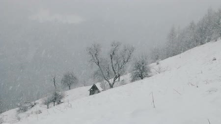 Румыния : Winter snowfall in the Carpathian Mountains Стоковые видеозаписи