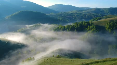 transilvânia : Sunrise aerial view of the foggy forest, in Apuseni Mountains