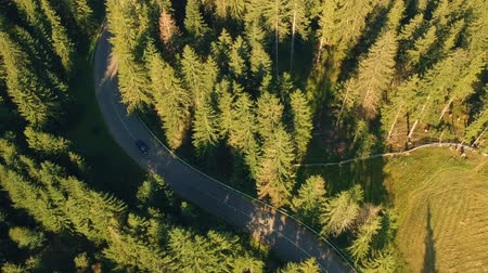 serpentine : Aerial view of cars driving on mountain road Stock Footage