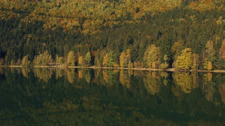Трансильвания : Autumn landscape of the colorful forest, at the mountain lake edge, with beautiful reflexions Стоковые видеозаписи
