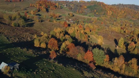 romeno : Aerial view above the romanian village, in autumn Stock Footage