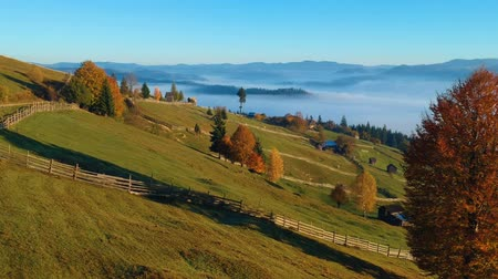 Румыния : Aerial View Of Colorful Autumn Hills