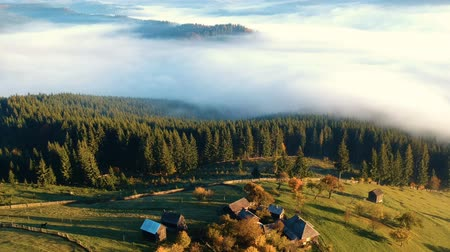 jungle : Aerial view above the romanian village, in autumn Stock Footage