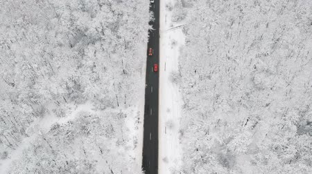 крытый : Winter view of a road in the middle of the forest covered with snow