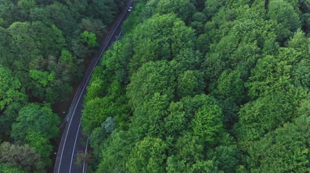 Aerial view of cars driving on a curvy mountain road