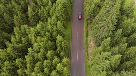 karpaty : Aerial view of red cars driving on a mountain road