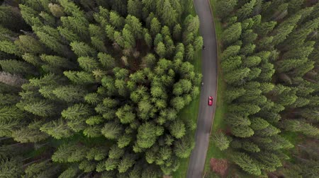 fenyőfa : Aerial view of red cars driving on a mountain road